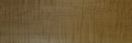Soft Curly Maple - Grade 5a